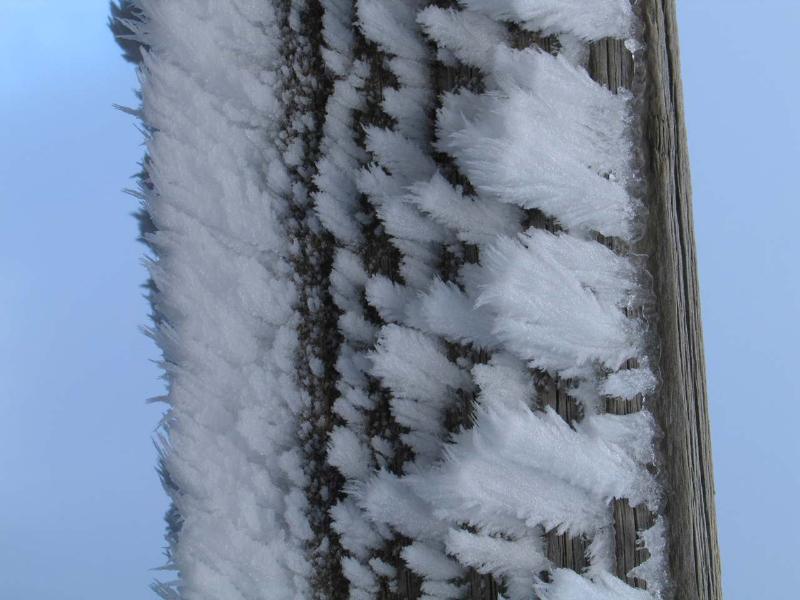 2008-02-02-schauinsland