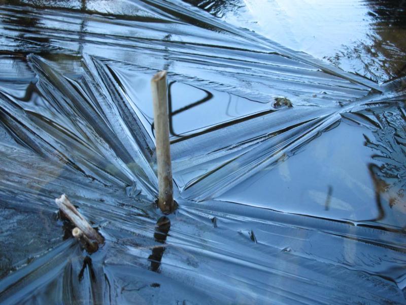 2009-12-26-teich-mit-eiskristallen